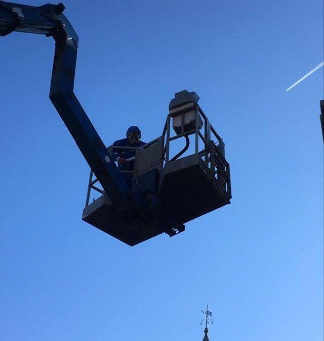 Wasp nest removal Cwmbran Pontypool Torfaen