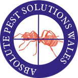 Absolute Pest Solutions